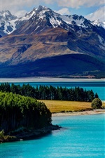 Lake Tekapo, Nova Zelândia, montanhas, floresta, árvores