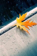 Preview iPhone wallpaper Macro autumn yellow leaves, rain, water drops