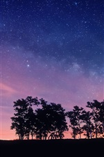Preview iPhone wallpaper Purple night sky, stars, trees, silhouettes