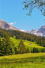 Preview iPhone wallpaper Switzerland landscape, mountains, prairie, forest, trees