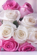 Preview iPhone wallpaper Chanel Coco Mademoiselle perfume, white and pink rose flowers