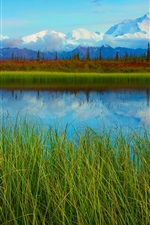 Preview iPhone wallpaper Denali National Park spring scenery, lake, mountains