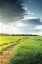 Preview iPhone wallpaper Nature scenery, fields, grass, trees, clouds, road