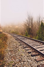 Preview iPhone wallpaper Railroad, fog, trees