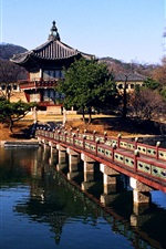South Korea park landscape