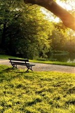 Preview iPhone wallpaper Summer morning in the park, bench, trees, grass, sunlight