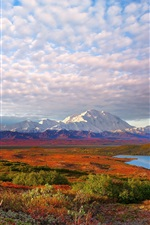 Preview iPhone wallpaper USA nature landscape, Denali National Park