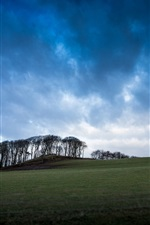 Preview iPhone wallpaper United Kingdom, Scotland, grass, valleys, trees, blue sky, clouds