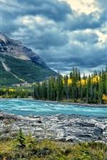 Preview iPhone wallpaper Athabasca River, Jasper National Park, Alberta, Canada, trees