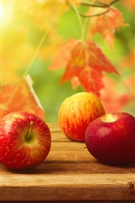 Autumn harvest, red apples on table, delicious fruit