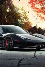 Ferrari 458 Italia black car at autumn