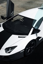 Lamborghini Aventador black white colors supercar