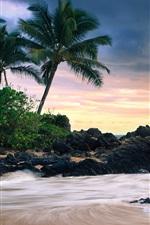 Preview iPhone wallpaper Makena Cove, Maui Island, Hawaii, secret beach