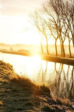 Nature landscape, road, sunrise, trees, grass, river