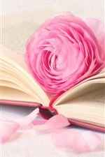 Preview iPhone wallpaper Pink rose flower with book