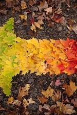 iPhone обои Осенние листья стрелки