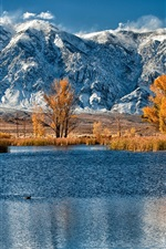 Preview iPhone wallpaper Autumn, snow mountains, yellow leaves trees, lake