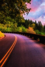 Preview iPhone wallpaper Beautiful sunset scenery, forest, trees, road, clouds colors