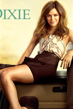 Hart of Dixie TV series