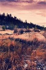 Preview iPhone wallpaper Hills, grass, sky, clouds, sunset, autumn