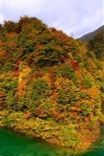 Lago Tazawa, Japão, montanhas, floresta, outono