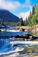 Preview iPhone wallpaper Nature scenery, forest, thick spruce, river, rocks, waterfalls, mountain
