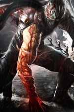 Preview iPhone wallpaper Ninja Gaiden, rain, blood