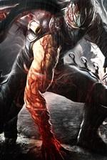 Ninja Gaiden, rain, blood