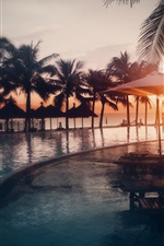 Pool, water, beach, ocean, palm trees, sunset