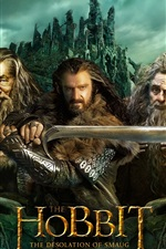 Preview iPhone wallpaper The Hobbit: The Desolation of Smaug