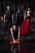 Preview iPhone wallpaper The Vampire Diaries 2013