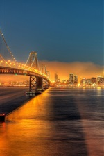 Preview iPhone wallpaper USA, California, San Francisco, Bay Bridge, city, night, lights