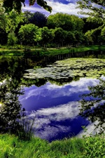 Preview iPhone wallpaper Beautiful nature, trees, grass, sky, clouds, pond, art pictures