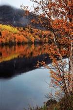 Preview iPhone wallpaper Canada, Newfoundland and Labrador, autumn, trees, river