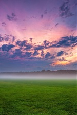 Germany, fields, trees, grass, mist, sunset, sky, clouds