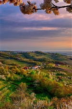 Preview iPhone wallpaper Italy, Lombardy, Collio at spring, valley, dusk, flowers, trees
