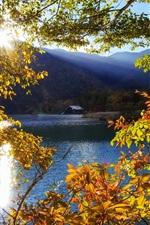 Preview iPhone wallpaper Japan, Nikko, Tochigi, mountain, lake, trees, sun rays, autumn