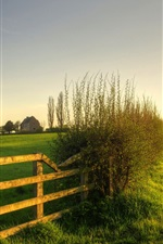 Nature scenery, green, meadow, grass, fence