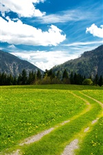 Pasture, the Bavarian Alps, mountains, trees, green field, sky, clouds