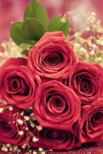 Preview iPhone wallpaper Red rose flowers gift