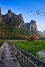 Preview iPhone wallpaper Thailand national park, wooden bridge, lake, grass, hut, mountains, birds