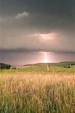 미리보기 iPhone 배경 화면 필드, 나무, 검은 구름, 폭풍, 번개