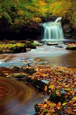 Preview iPhone wallpaper Northern England, Yorkshire, forest, waterfall, foliage, autumn, water