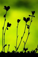 Preview iPhone wallpaper Plants leaves macro, black silhouettes, green background