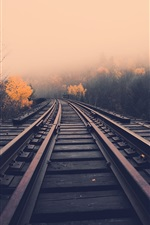 Preview iPhone wallpaper Railway, dawn, fog, trees, fall