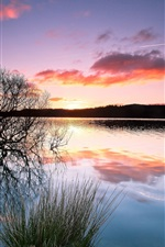 Preview iPhone wallpaper Trees, lake, water reflection, sunset, twilight