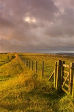 Preview iPhone wallpaper West Sussex, England, landscape, grass, fence, farm, sheep