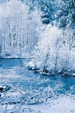 Preview iPhone wallpaper Winter nature scenery, white snow, trees, river