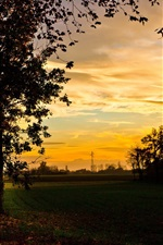 Preview iPhone wallpaper Autumn, field, trees, evening, sunset, beautiful scenery