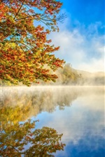 Preview iPhone wallpaper Autumn landscape, mist, nature, lake, forest